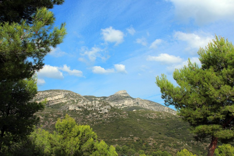 garlaban-randonnee-nature-massif-de-l-etoile-oti-aubagne-1174